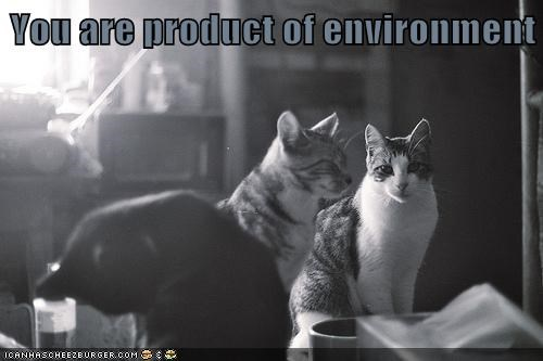 You are product of environment