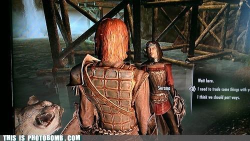 dragonborn,video games,Skyrim,wolf