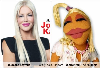Joumana Kayrous Totally Looks Like Janice from The Muppets