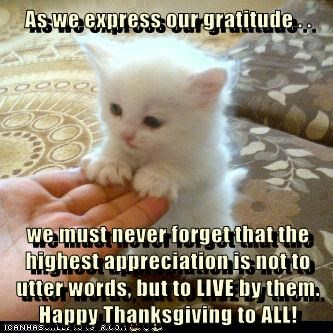 As we express our gratitude . .  we must never forget that the highest appreciation is not to utter words, but to LIVE by them. Happy Thanksgiving to ALL!