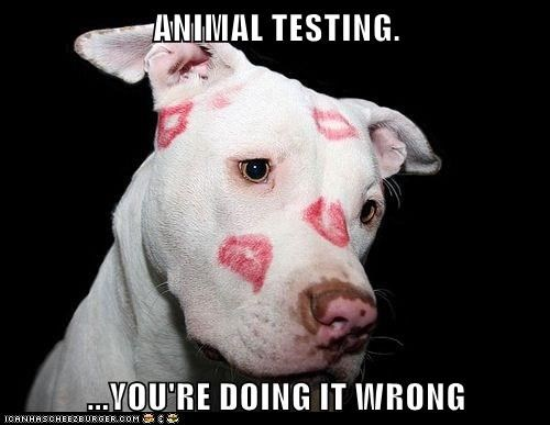 ANIMAL TESTING.  ...YOU'RE DOING IT WRONG