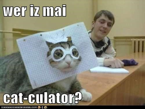 wer iz mai   cat-culator?