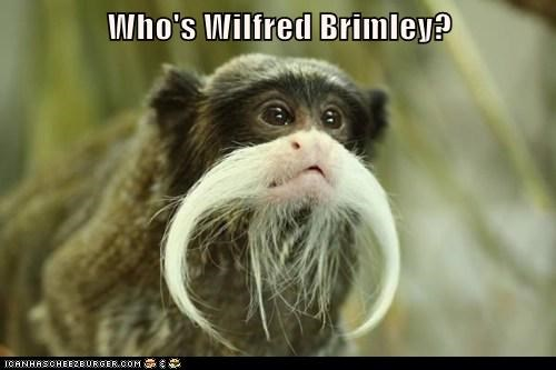 Who's Wilfred Brimley?