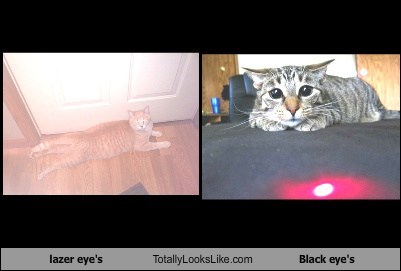 lazer eye's Totally Looks Like Black eye's