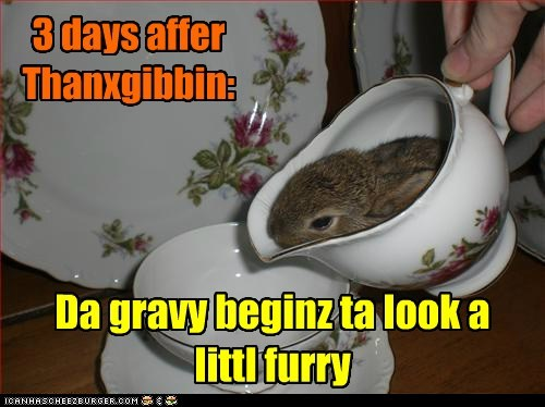 bunnies,thanksgiving,gravy,mold,eyes,rotten,furry,rabbits