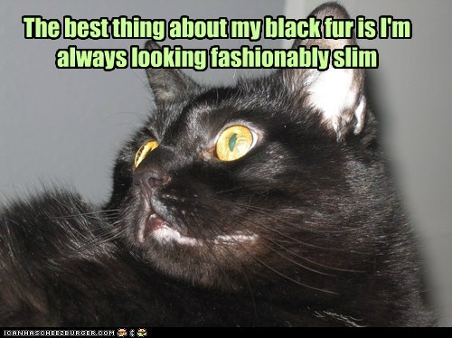 The best thing about my black fur is I'm always looking fashionably slim