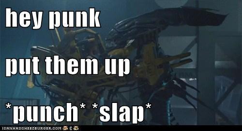 hey punk  put them up *punch* *slap*