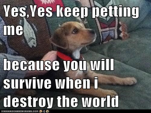 Yes,Yes keep petting me  because you will survive when i destroy the world