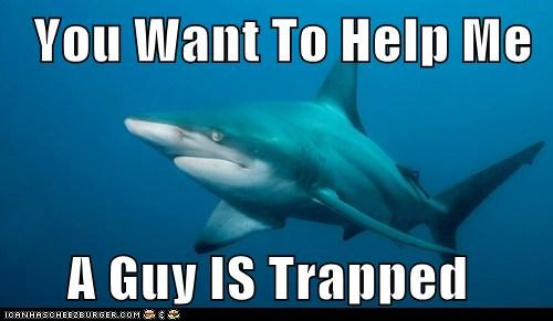 You Want To Help Me       A Guy IS Trapped