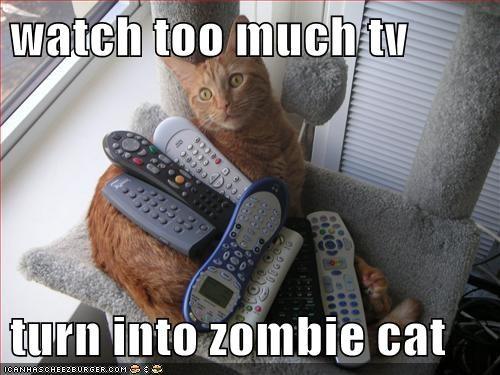 watch too much tv  turn into zombie cat