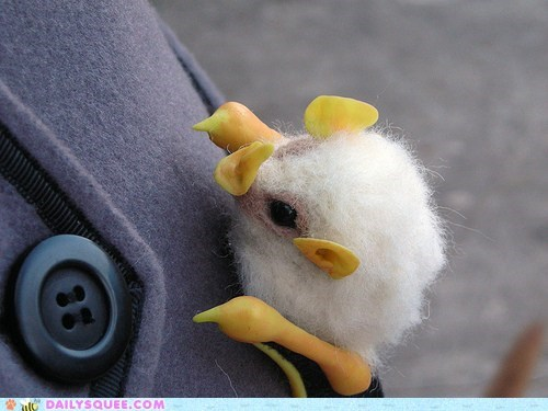 Whatsit: Bat or Marshmallow?