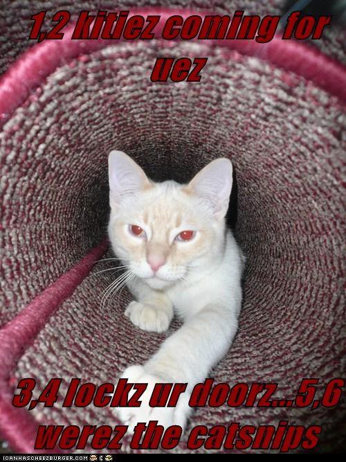 1,2 kitiez coming for uez  3,4 lockz ur doorz...5,6 werez the catsnips