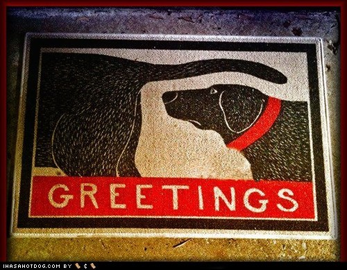 dogs,greetings,welcome mat,sniffing butts