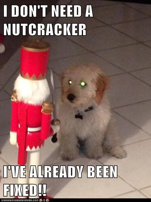 I DON'T NEED A NUTCRACKER  I'VE ALREADY BEEN FIXED!!