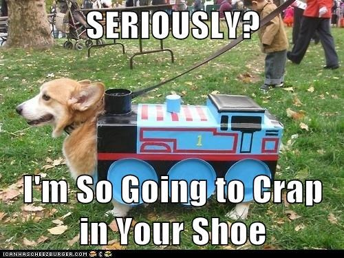 SERIOUSLY?  I'm So Going to Crap in Your Shoe