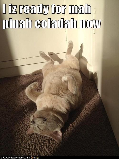 I iz ready for mah pinah coladah now