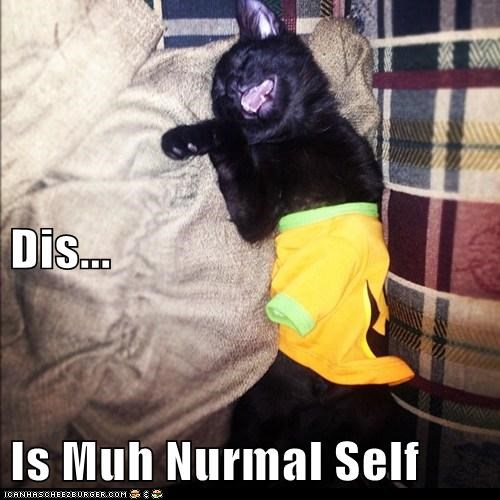Dis... Is Muh Nurmal Self