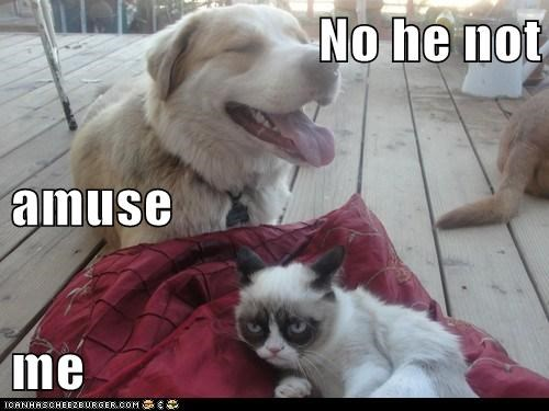 No he not  amuse  me