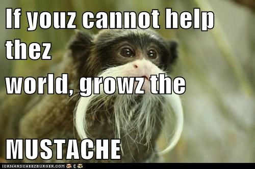 If youz cannot help thez world, growz the MUSTACHE