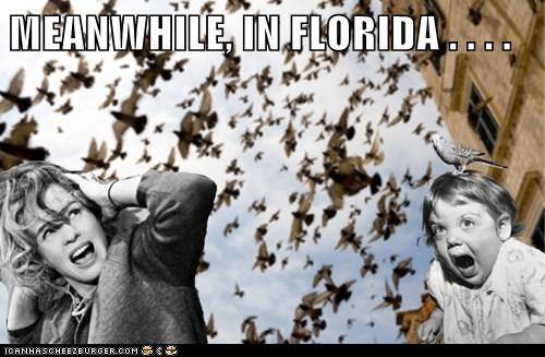 MEANWHILE, IN FLORIDA . . . .