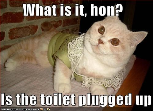 What is it, hon?  Is the toilet plugged up