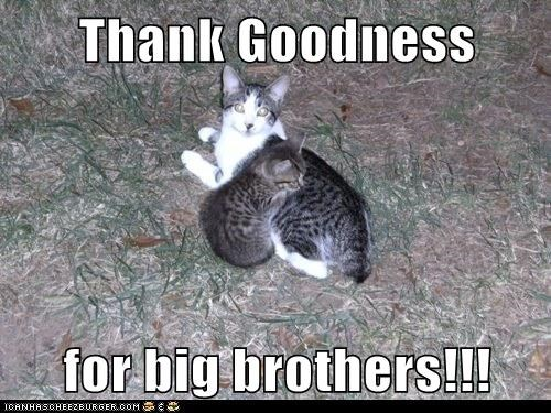 Thank Goodness  for big brothers!!!