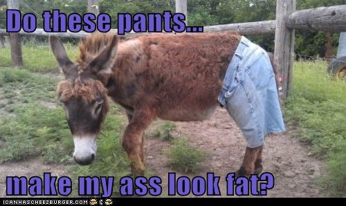 Do these pants...  make my ass look fat?