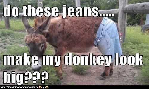 do these jeans.....  make my donkey look big???