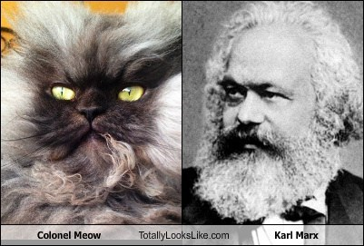 Colonel Meow Totally Looks Like Karl Marx
