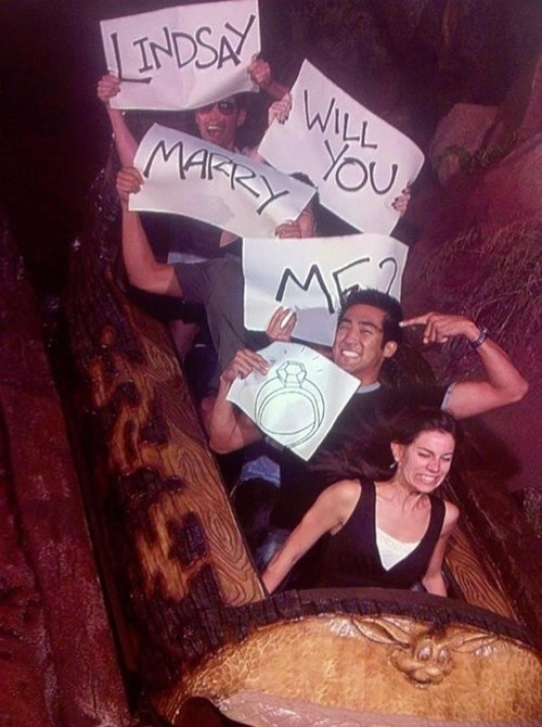 ride,splash mountain,proposal,log flume