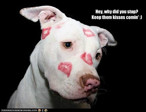Hey, why did you stop? Keep them kisses comin' ;)