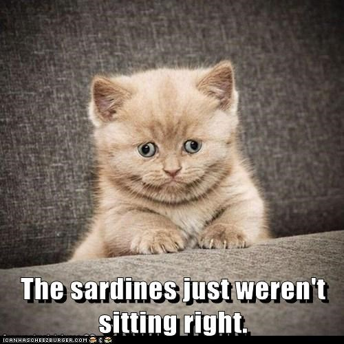 The sardines just weren't sitting right.