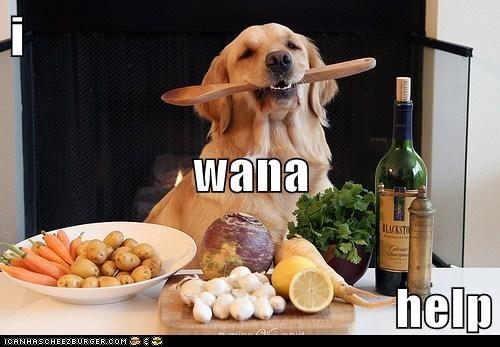 i  wana help