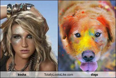 kesha Totally Looks Like dogs