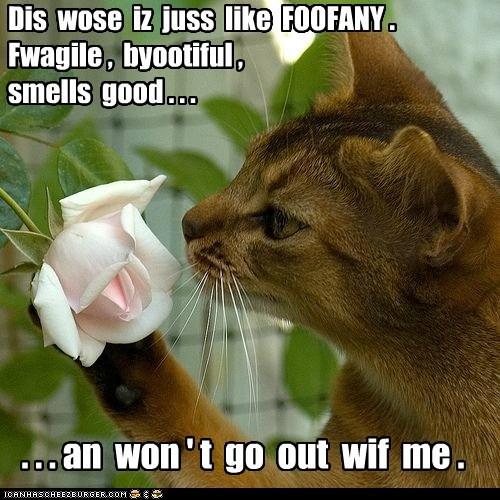 Dis juss like FOOFANY.