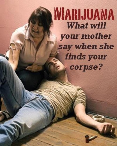 This is What Happens You Take Too Many Marijuanas
