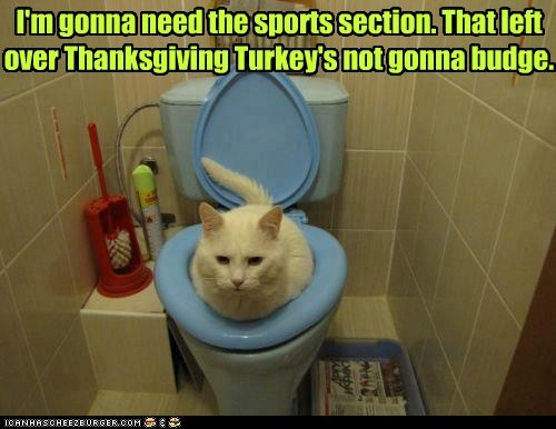 I'm gonna need the sports section. That left over Thanksgiving Turkey's not gonna budge.