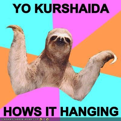YO KURSHAIDA  HOWS IT HANGING