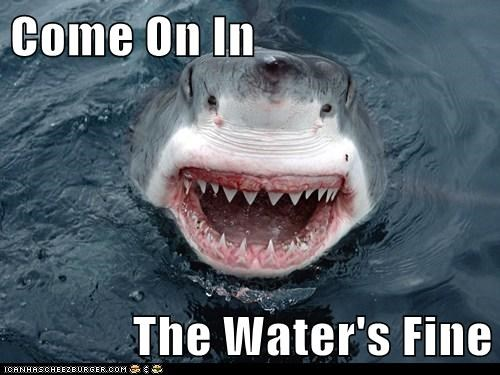 Come On In  The Water's Fine