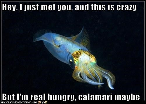 Hey, I just met you, and this is crazy  But I'm real hungry, calamari maybe