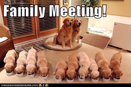Family Meeting!