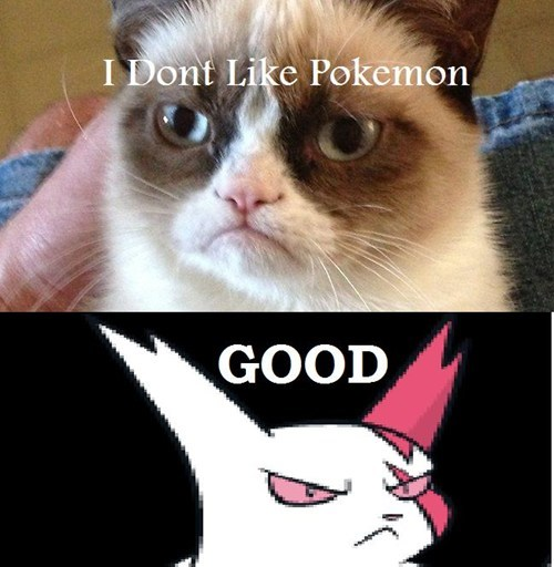 Pokémon Has its Own Tard