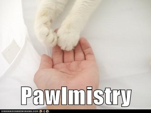 Pawlmistry