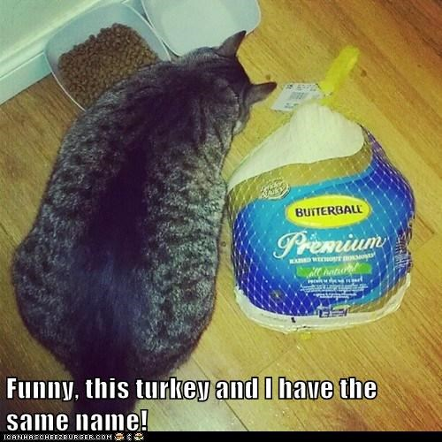Funny, this turkey and I have the same name!
