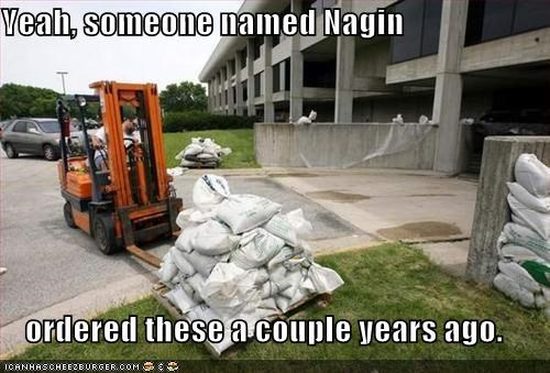 Yeah, someone named Nagin   ordered these a couple years ago.