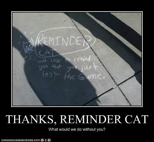 THANKS, REMINDER CAT