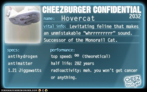 Cheezburger Confidential: Hovercat