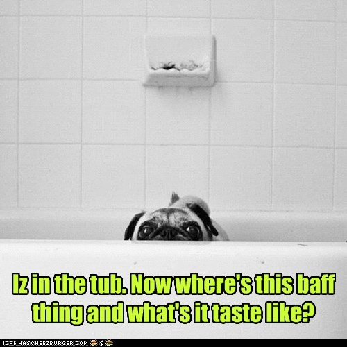 Iz in the tub. Now where's this baff thing and what's it taste like?