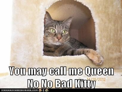 You may call me Queen No No Bad Kitty