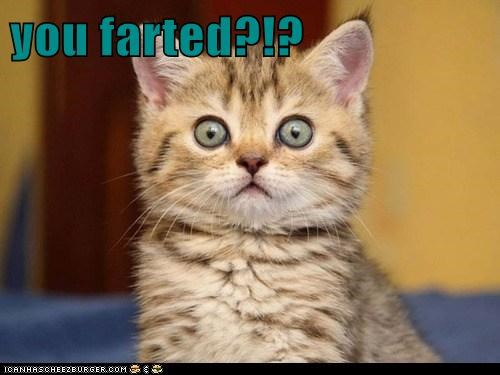 you farted?!?
